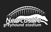 Newcastle_greyhound